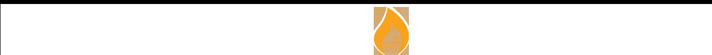 New UW White Logo