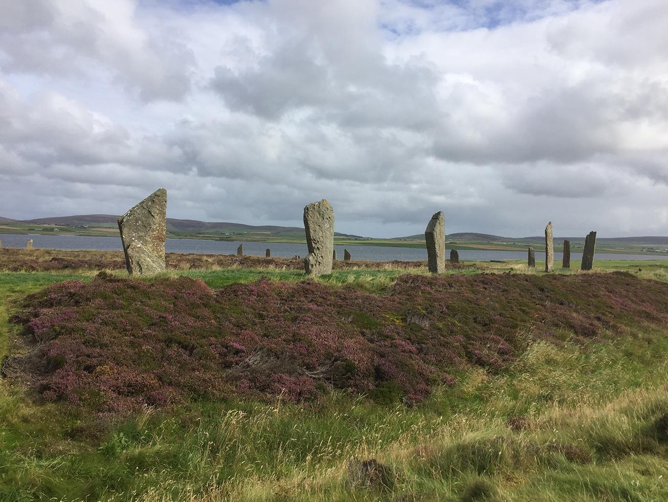Mumtaz Scotland Image